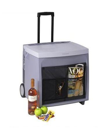 Абсорбционный (электрогазовый) холодильник